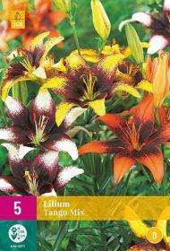 Lilium tango mix (5 zakjes)
